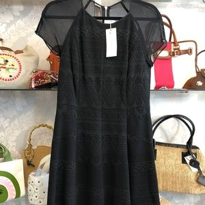 REBECCA TAYLOR Jacquard Sheer Sleeve Dress